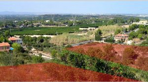 Building plots for sale in Alberic, Valencia – Ref: 009267