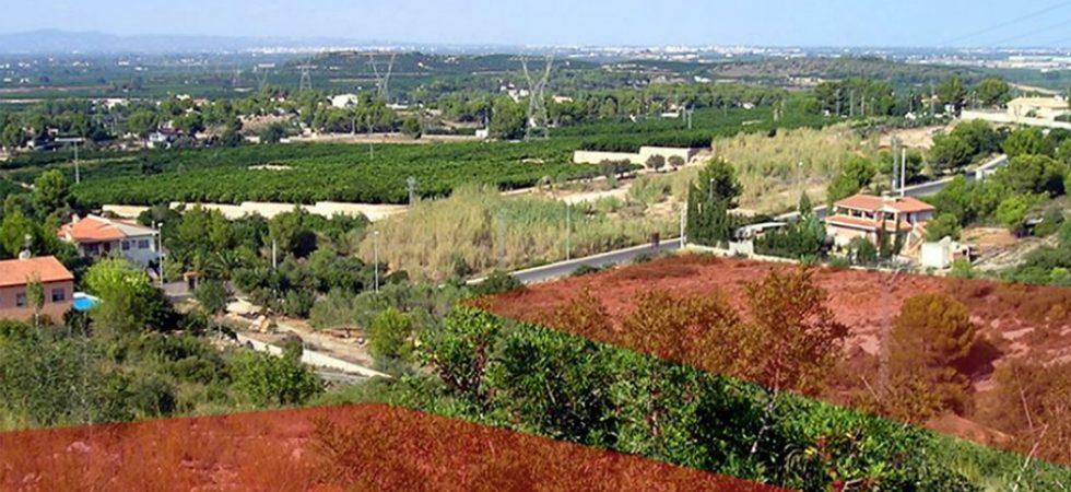 Building plots for sale in Alberic, Valencia