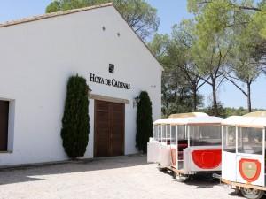 Hoya de Cadenas wine train