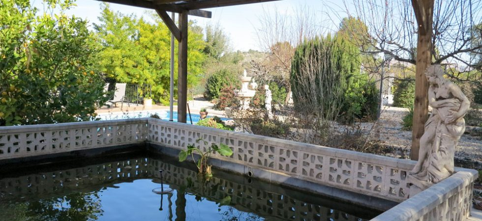 Feature fish pond