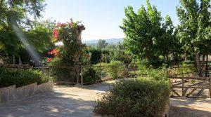 Path to lower garden