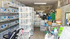 Storeroom - 32m²