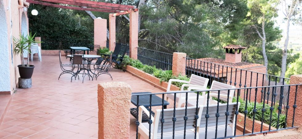 Ground floor Rear terrace -  60m²