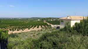 Building land for sale in Alberic, Valencia – 020880